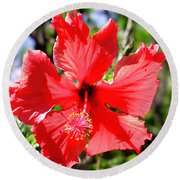 F20 Red Hibiscus Round Beach Towel