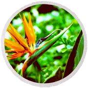 F21 Bird Of Paradise Flower Round Beach Towel