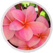 F23 Plumeria Frangipani Flowers Round Beach Towel