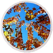 Fall Apricot Leaves Round Beach Towel