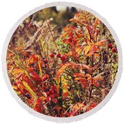 Fall Around  Round Beach Towel