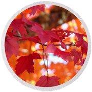 Fall Art Red Autumn Leaves Orange Fall Trees Baslee Troutman Round Beach Towel