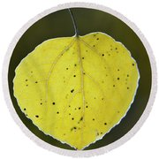 Fall Aspen Leaf Round Beach Towel