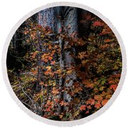 Fall Beauty Round Beach Towel