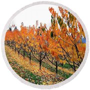 Fall Cherry Orchard Round Beach Towel