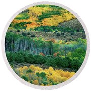 Fall Color In The Eastern Sierras California Round Beach Towel