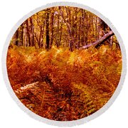 Fall Color In The Woods Round Beach Towel