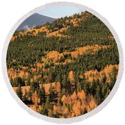 Fall Colors At Rocky Mountain National Park Round Beach Towel