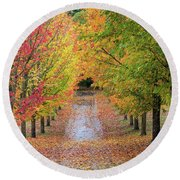 Fall Colors In Oregon Round Beach Towel