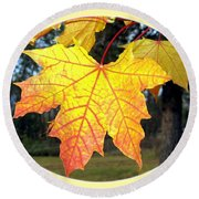 Fall Finery 2 Round Beach Towel