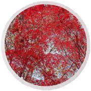 Fall Foilage Round Beach Towel