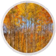 Fall Foliage Color Vertical Image Orton Round Beach Towel