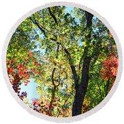 Fall Foliage Round Beach Towel