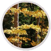 Fall Forest 1 Round Beach Towel