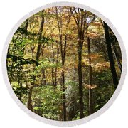 Fall Forest 2 Round Beach Towel