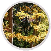 Fall Forest 3 Round Beach Towel