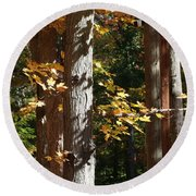 Fall Forest 4 Round Beach Towel