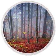 Fall Forest In Fog Round Beach Towel