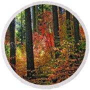 Fall Forest Splendor Round Beach Towel