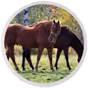 Horses Fall Grazing Round Beach Towel