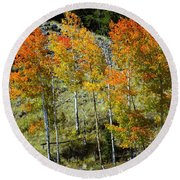 Fall In Colorado Round Beach Towel
