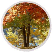 Fall In Kaloya Park 4 Round Beach Towel