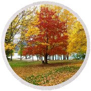 Fall In Kaloya Park 5 Round Beach Towel
