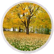 Fall In Kaloya Park 7 Round Beach Towel