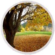 Fall In Kaloya Park 8 Round Beach Towel