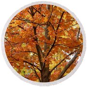 Fall In Kayloya Park 2 Round Beach Towel