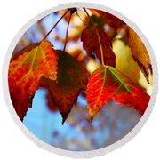 Fall In Maple Ridge Round Beach Towel