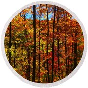 Fall In Ontario Canada Round Beach Towel