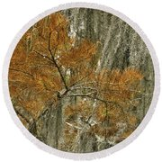 Fall In The Swamp Round Beach Towel