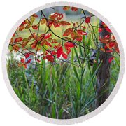 Fall Is Upon Us Round Beach Towel