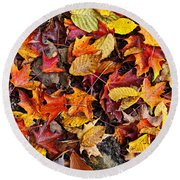 Fall Leaves On Forest Floor Round Beach Towel