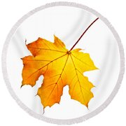 Fall Maple Leaf Round Beach Towel by Elena Elisseeva