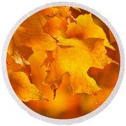 Fall Maple Leaves Round Beach Towel