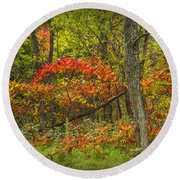 Fall Sumac Trees With Red Leaves In A Michigan Forest During Autumn Round Beach Towel