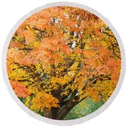 Fall Tree Art Print Autumn Leaves Round Beach Towel