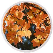Fall Tree Art Prints Orange Autumn Leaves Baslee Troutman Round Beach Towel