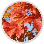 Fall Tree Leaves Art Prints Blue Sky Autumn Baslee Troutman Round Beach Towel