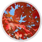 Fall Tree Leaves Red Orange Autumn Leaves Blue Sky Round Beach Towel