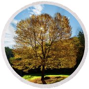 Fall Tree Silhouette Kent Falls State Park Connecticut Round Beach Towel