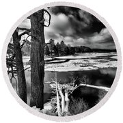 Fallen Trees In The Moose River Round Beach Towel