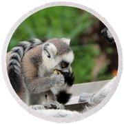 Family Of Lemurs Round Beach Towel