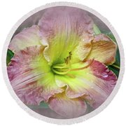 Fancy Daylily In Pink And Yellow Round Beach Towel