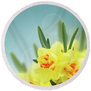 Fancy Spring Narcissus Garden  Round Beach Towel