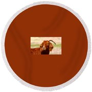Fancy The Red Goat Round Beach Towel