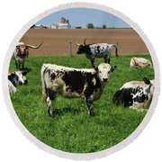 Fantastic Farm On A Spring Day With Cows Round Beach Towel
