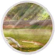 Farm - Geese -  Birds Of A Feather - Panorama Round Beach Towel